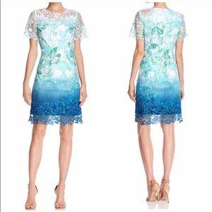 Elie Tahari Beautiful Ombré Lace Dress Size 8